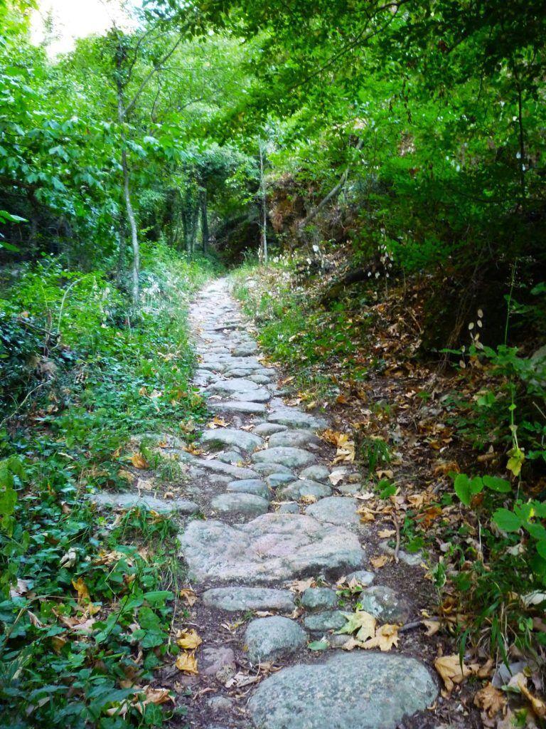 subir a los monasterios de Meteora