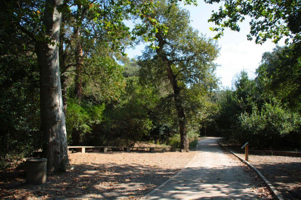 Parc deCollserola. Catalunya