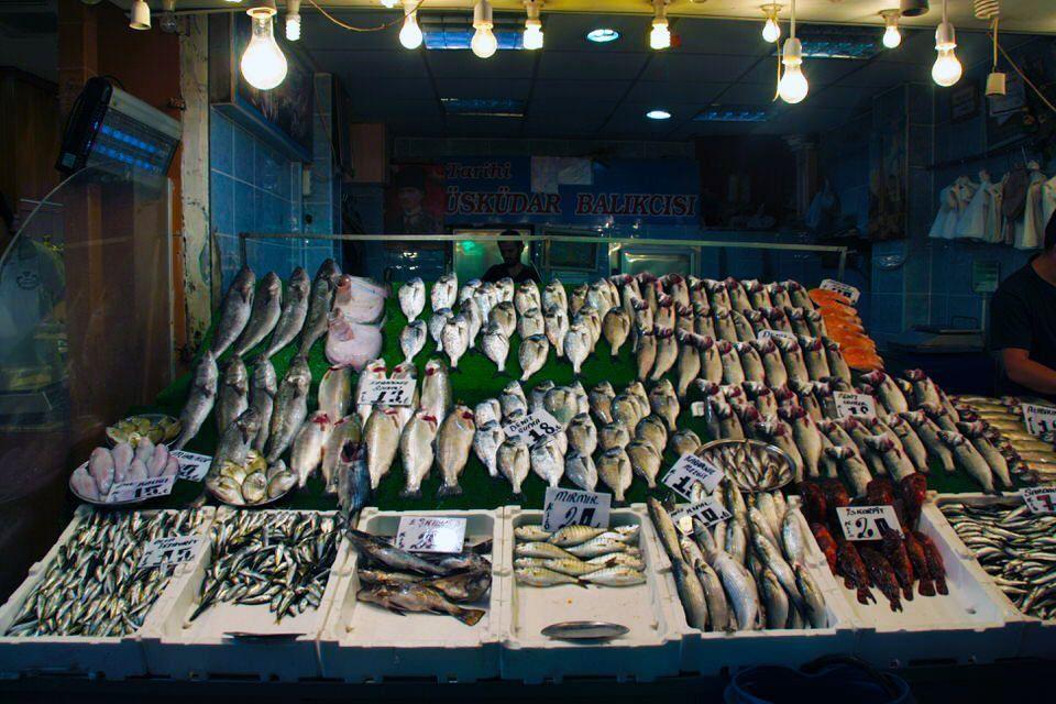 Pescado Fresco en Estambul