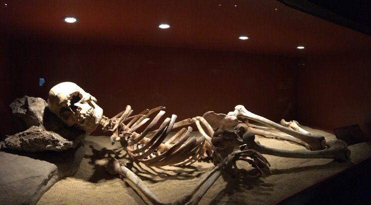 Pepita en el Museo