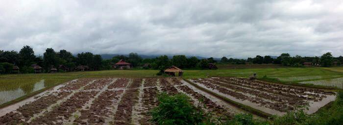 Panorámica de arrozales a las afueras de Pai. Tailandia. El viaje me hizo a mí. Blog de viajes