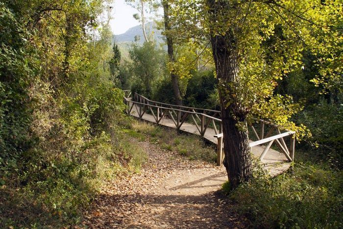 sendero río majaceite