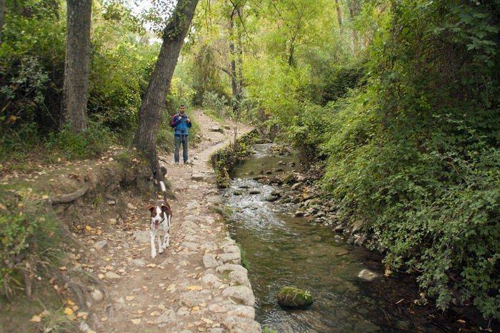 Principio del sendero en El Bosque. Sierra de Grazalema. Treking Rio Majaceite. Cadiz. El viaje me hizo a mi. Blog de viajes