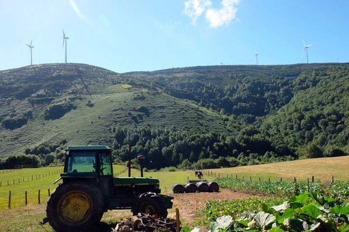 estampa-del-camino-norte-de-santiago-galicia