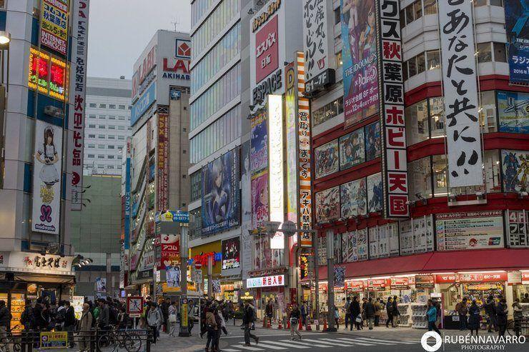 Visitar Japón en 15 días