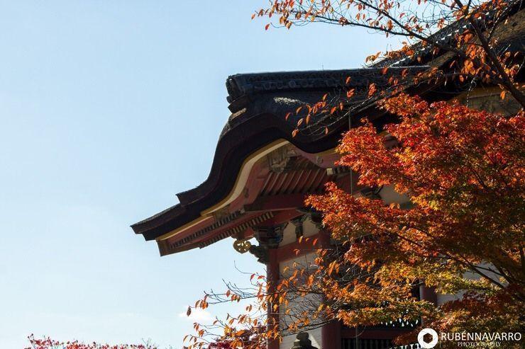 Itinerario Japón