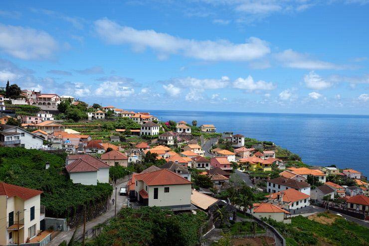 Que ver en Madeira, la Isla de las flores