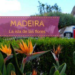 Visitar Madeira