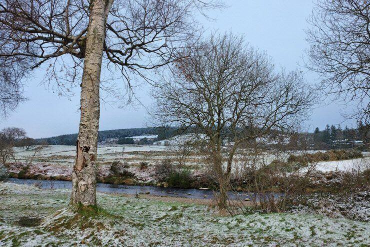 Wicklow en invierno