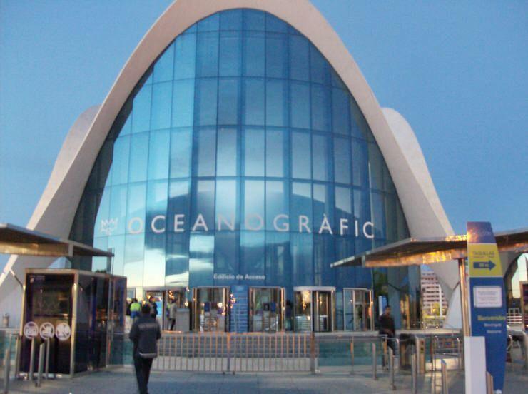 visitar el Oceanográfico de Valencia