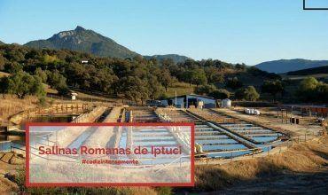 Salinas Romanas de Iptuci