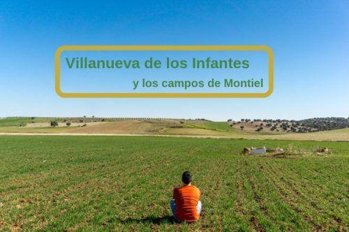 los campos de Montiel