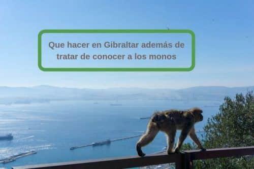10 actividades qué ver en Gibraltar además de ir a los monos