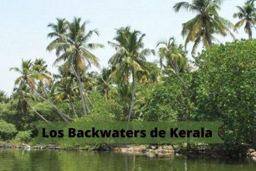 Visitar los backwaters de Kerala y disfrutar las vistas