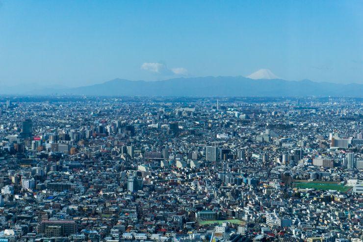 Qué ver y qué hacer en Shinjuku