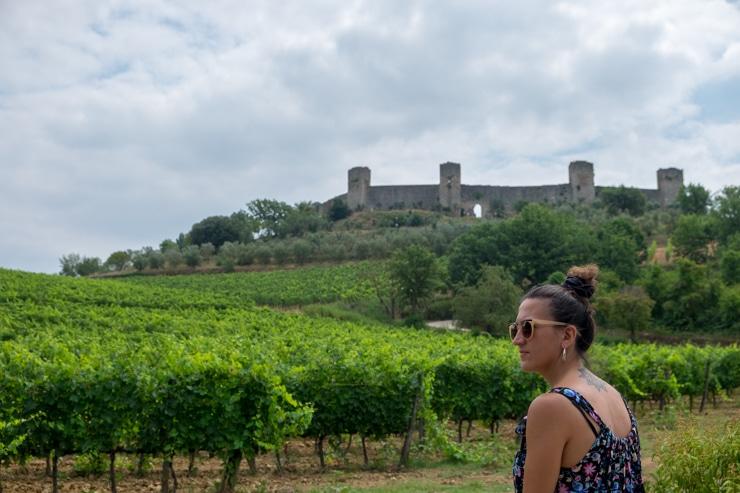 viñedos de la Toscana