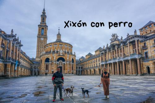 Xixón con perro