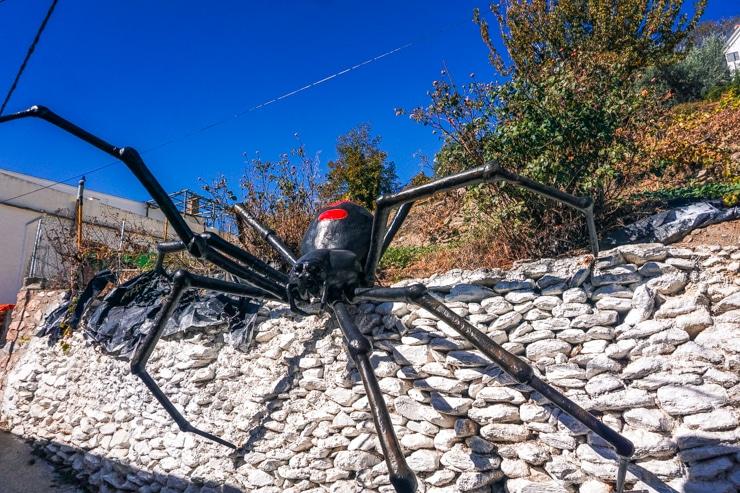 Araña Tejedora de Sueños