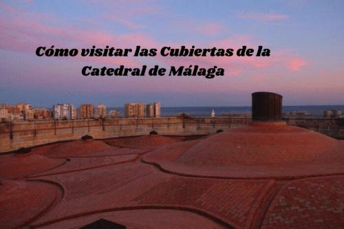 Cómo visitar las Cubiertas dela Catedral de Málaga