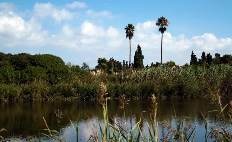 Espacios Naturales del Delta del Llobregat