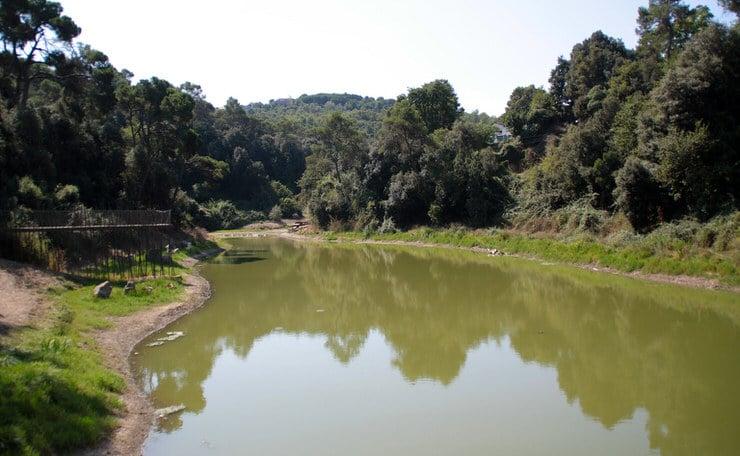 Parque Natural de Collserola